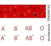 vector red blood cells....   Shutterstock .eps vector #556098742