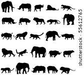 africa's five wild beasts ...