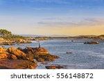 angler fishing on barbafeita...   Shutterstock . vector #556148872