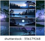 set vector illustration nature... | Shutterstock .eps vector #556179268