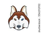 husky dog head mascot. flat... | Shutterstock . vector #556191952