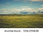 landscape of anglesey wales ... | Shutterstock . vector #556194838