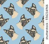 seamless vector pattern with... | Shutterstock .eps vector #556216966