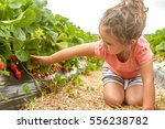 Happy Young Child Girl Picking...