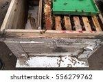 Wooden Box Beekeeping...