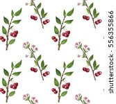 seamless pattern with cherry... | Shutterstock . vector #556355866