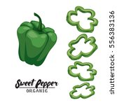 cartoon sweet pepper. ripe... | Shutterstock .eps vector #556383136