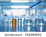flask and vial with orange and... | Shutterstock . vector #556384852