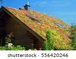 sedum roof   Shutterstock . vector #556420246
