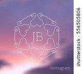 modern minimalist vector floral ... | Shutterstock .eps vector #556505806
