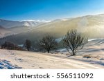 few naked trees on snowy hillside on foggy morning in winter mountains - stock photo