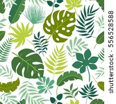 pattern with green tropical... | Shutterstock .eps vector #556528588