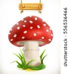 fly agaric mushroom. 3d vector... | Shutterstock .eps vector #556536466