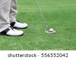 golf player put a golf ball on... | Shutterstock . vector #556552042