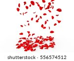 Stock photo rose petals fall to the floor isolated background 556574512