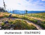 woman riding downhill on mtb... | Shutterstock . vector #556598092
