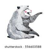 hand drawn watercolor... | Shutterstock . vector #556603588