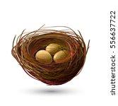 birds nest and golden eggs on... | Shutterstock .eps vector #556637722