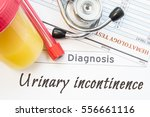 urinary incontinence diagnosis. ...   Shutterstock . vector #556661116