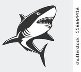 shark emblem isolated on white... | Shutterstock .eps vector #556664416