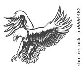 eagle emblem isolated on white... | Shutterstock .eps vector #556664482