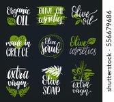 vector hand lettering olive... | Shutterstock .eps vector #556679686