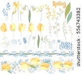 easter  set with spring tulips  ... | Shutterstock .eps vector #556743382