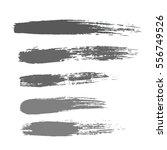 grunge hand drawn brush stroke... | Shutterstock .eps vector #556749526