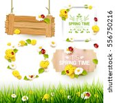 Spring collection of labels, signs and borders | Shutterstock vector #556750216