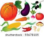 vegetable set | Shutterstock .eps vector #55678105