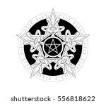 beautiful mandala pentagram... | Shutterstock .eps vector #556818622