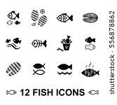 set of fish vector icon... | Shutterstock .eps vector #556878862
