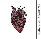 hand drawn stylized grunge...   Shutterstock . vector #556908205