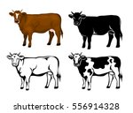cow in brown color  silhouette  ... | Shutterstock .eps vector #556914328