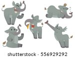 vector set of five cartoon... | Shutterstock .eps vector #556929292