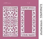 elegant panels with lace... | Shutterstock .eps vector #556939672