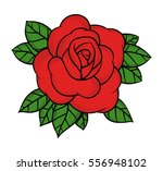 flower rose  red buds and green ... | Shutterstock .eps vector #556948102