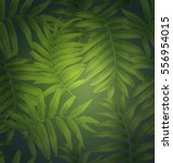 tropical palm leaves  seamless... | Shutterstock .eps vector #556954015