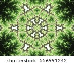 Green Fractal Mandala  Digital...
