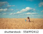the blond boy with a butterfly... | Shutterstock . vector #556992412
