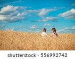 boys in a field in the village... | Shutterstock . vector #556992742