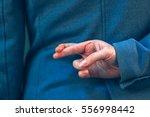 female politician in elegant... | Shutterstock . vector #556998442