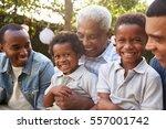 multi generation male family...   Shutterstock . vector #557001742