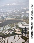 Small photo of Terraced rice fields in water season of Hani ethnic people in Yunnan province, China:Selective focus with shallow depth field