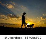 Stock photo silhouette of man and dog walking on sunset background 557006932