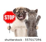 Stock photo cat and dog with the stop sign isolated on white background 557017396