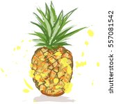 fresh pineapple. | Shutterstock .eps vector #557081542