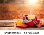 tea mug and warm scarf with... | Shutterstock . vector #557088835