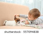 Stock photo cute little boy with puppy on sofa at home 557094838