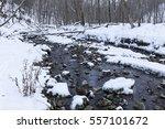 Creek In The Woods In Winter